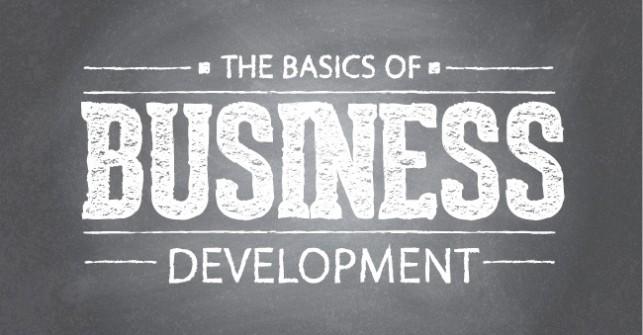 Desarrollo de negocio